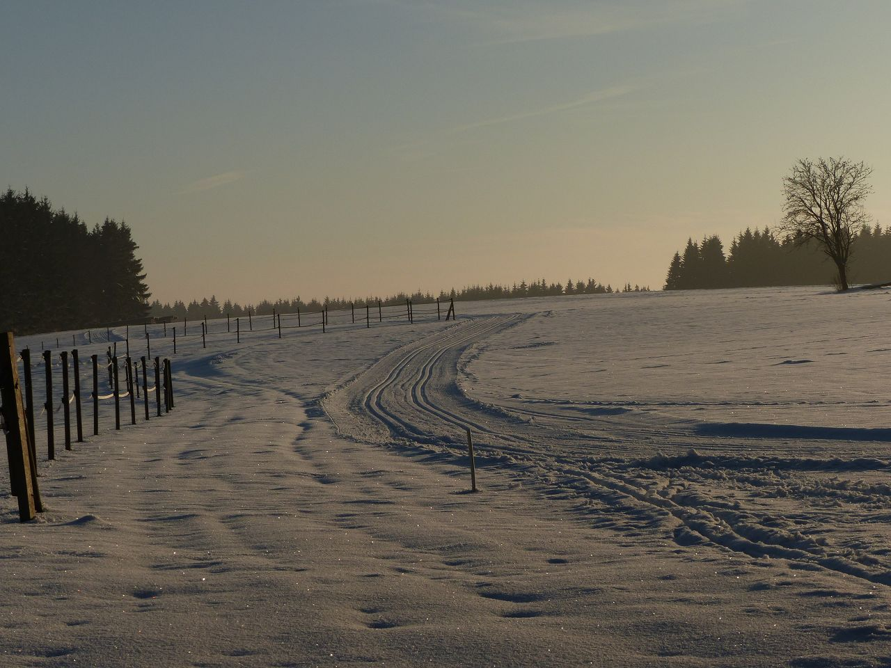 Über die Wintersportabteilung